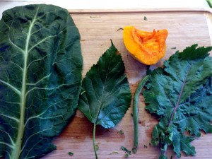 Daily variety of greens in the photo: collard greens, mulberry leaf, green string bean, russet kale and yellow butternut squash