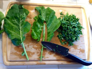 Cutting stems off leaves