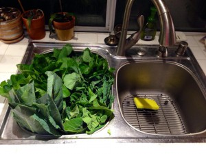 If your greens are wilted you can soak them in the sink to freshen them up before storing the refrigerator