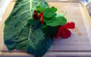 Daily variety: collard greens and nasturtium leaves and flowers